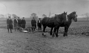 allwood  ploughing match