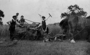 allwwod  harvest reaper 1920s