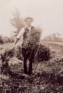 harvest  by hand 1920s
